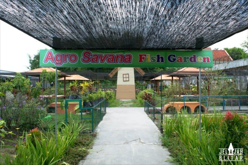 Agro Savana di Fish Garden