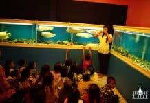 Belajar Ikan di Fish Garden Blitar