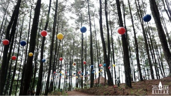 Foto Taman Ayu Gogoniti