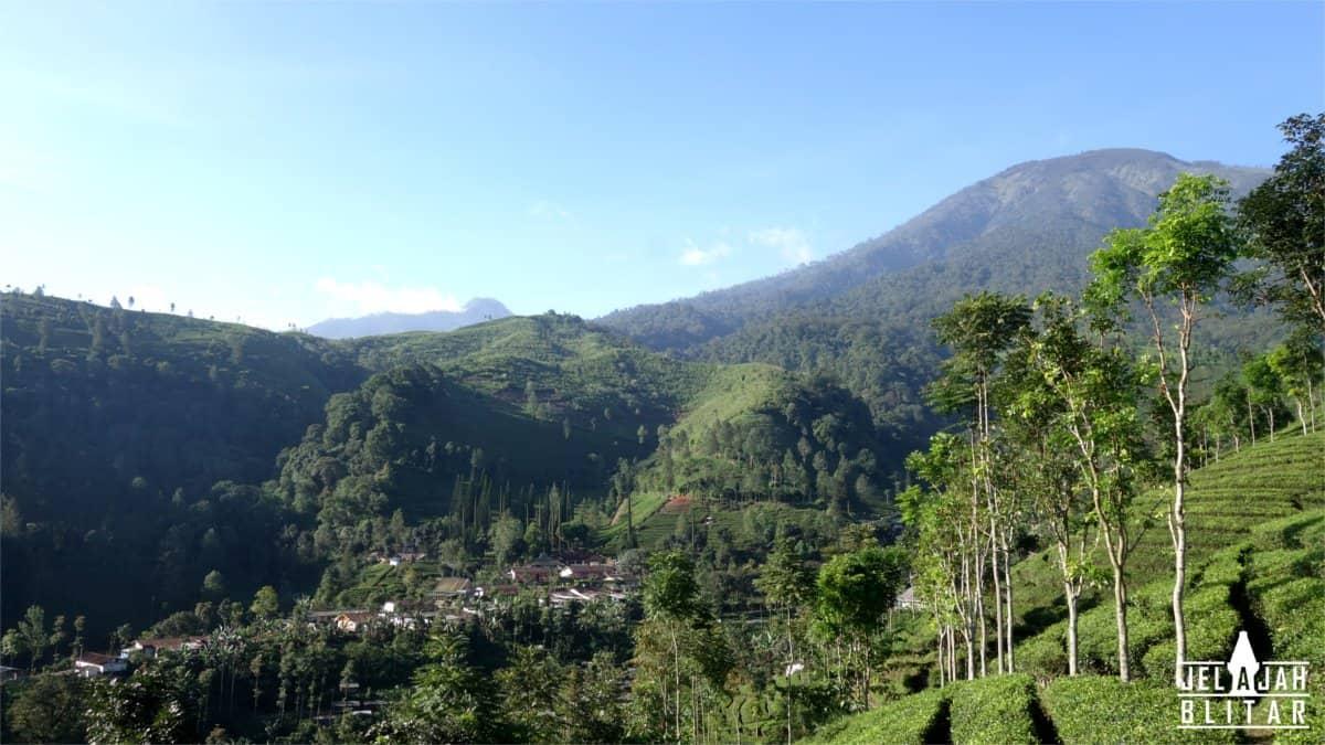 Gn Kawi dari Sekitar Candi Sirah Kencong