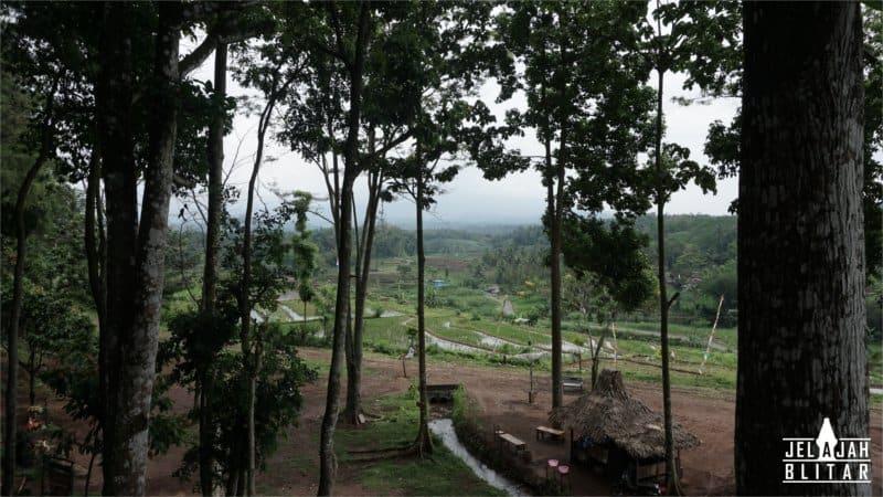 Taman Ayu Gogoniti