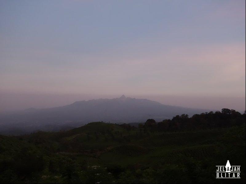 View Gn Kelud dari Wukir Negoro