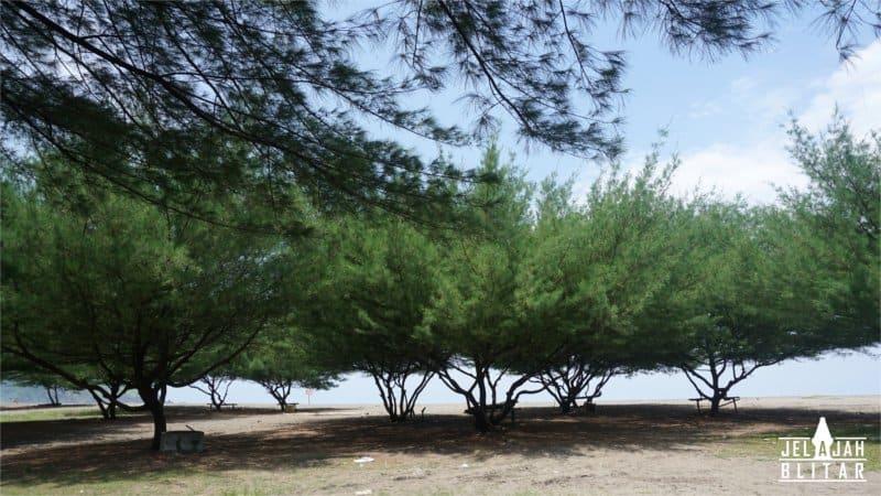Pantai Jolosutro untuk Camping
