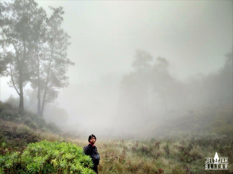 Savana Gunung Butak